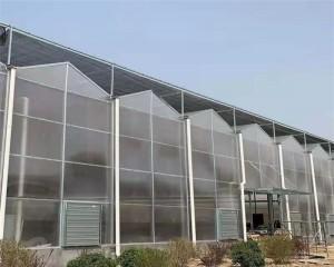 Venlo Greenhouse