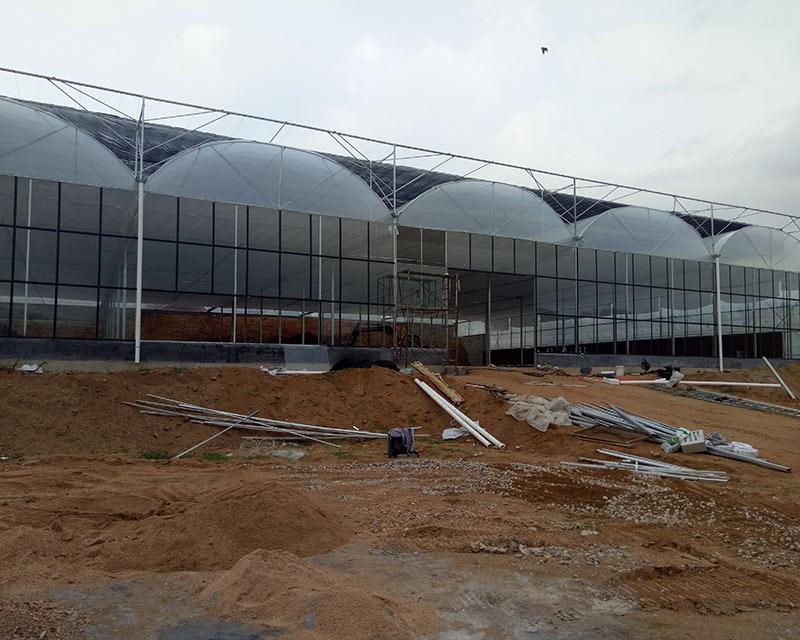 Project-greenhouse-linqu