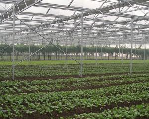 landwirtschaftlech Treibhauseffekt
