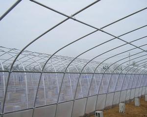 tunnel greenhouse