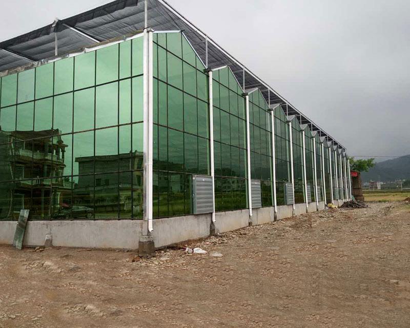 Project-glass-greenhouse-hubei-01