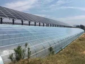How to repair vegetable greenhouse greenhouse film orignal