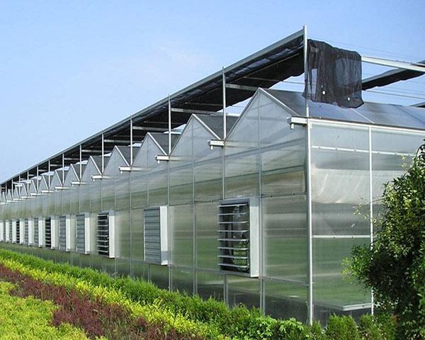 polycarbonate-greenhouse-12