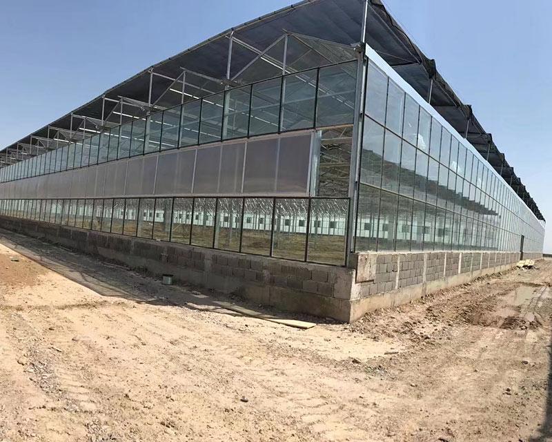 Türkmenisztán üvegház-02
