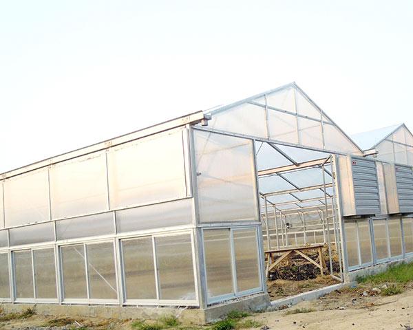 Polycarbonate greenhouse - China Qingzhou Hanyang Greenhouse Project